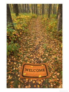542680welcome-mat-on-forest-trail-posters1